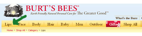 Burt's-Bees-Lips-category