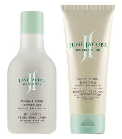 June-Jacobs-Vanda-Orchid-collection