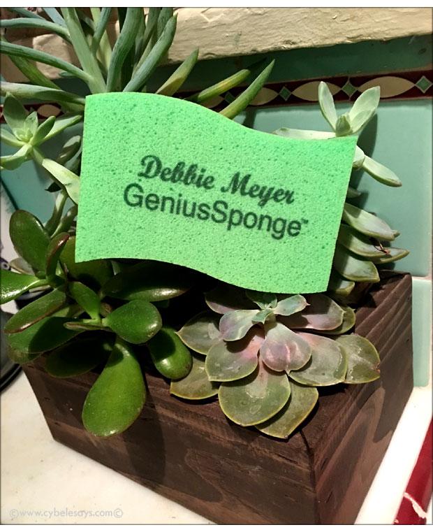 Debbie-Meyer-GeniusSponge