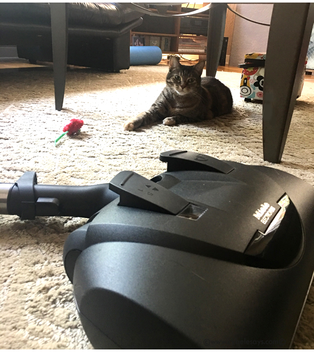 Darla-her-mouse-and-the-Miele-Complete-C3-Cat-&-Dog-Powerbrush