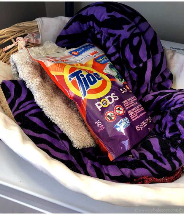 Tide-PODS-washing-the-dog-beds