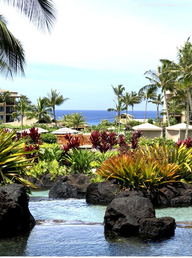 Kauai-2018